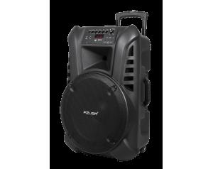 """Kolumna aktywna z 2 mikrofonami bezprzewodowymi, SD, Bluetooth, USB 15"""" 120W"""