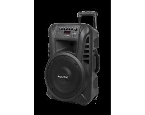 """Kolumna aktywna z 2 mikrofonami bezprzewodowymi, SD, Bluetooth, USB 12"""""""