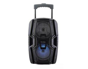 Przenośny Głosnik Bluetooth z USB SD radio FM + mikrofon